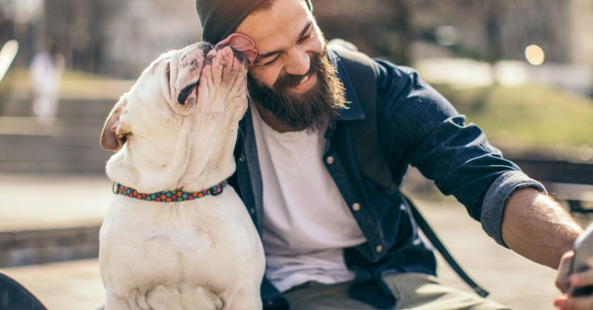 Top 3 Smart Gadgets To Upgrade Your Pet Care
